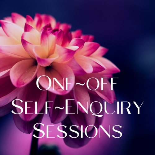 One-Off Self-Enquiry sessions banner
